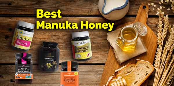Best Manuka Honey Reviews