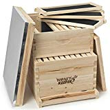 Top 10 Best Bee Hive Boxes 2019 Reviews And Buying Guideline