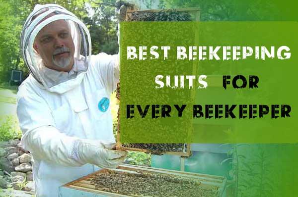 Best Beekeeping Suits