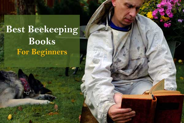 Best Beekeeping Books