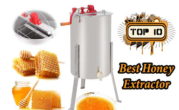 Best Honey Extractor Reviews for The Money – Ultimate Guide 2019