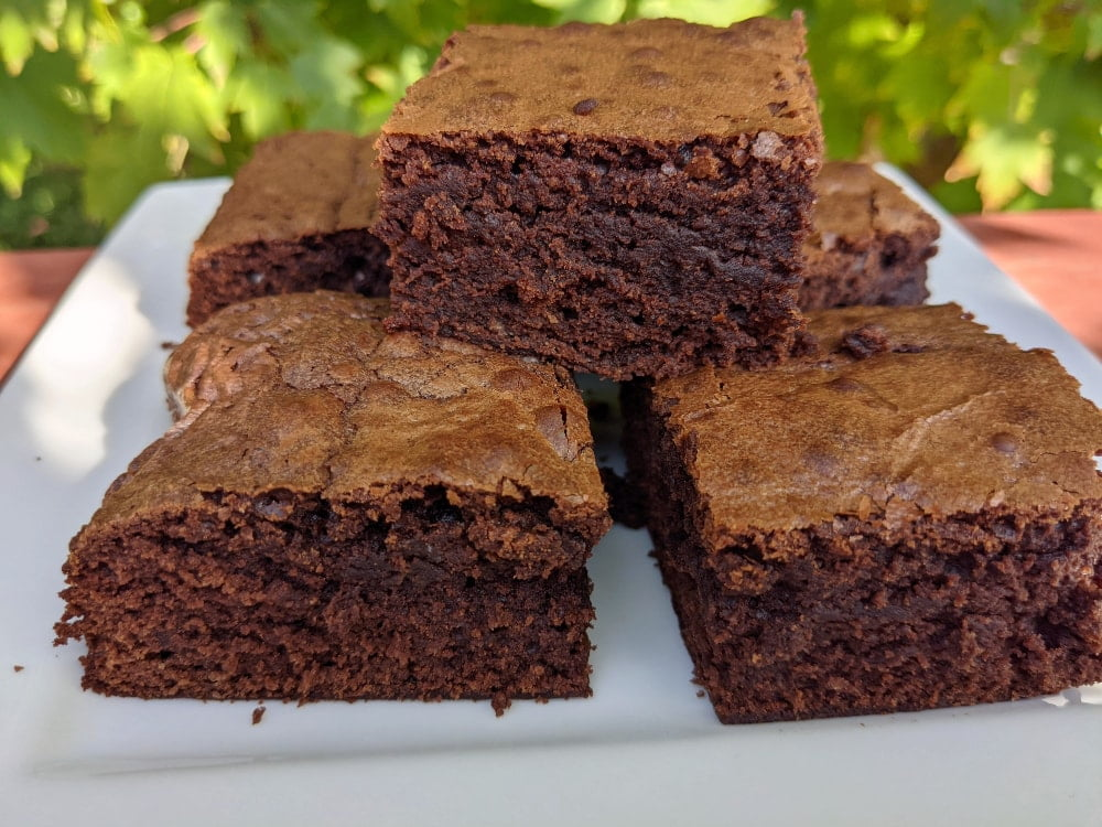 chocolate brownies made with sourdough starter